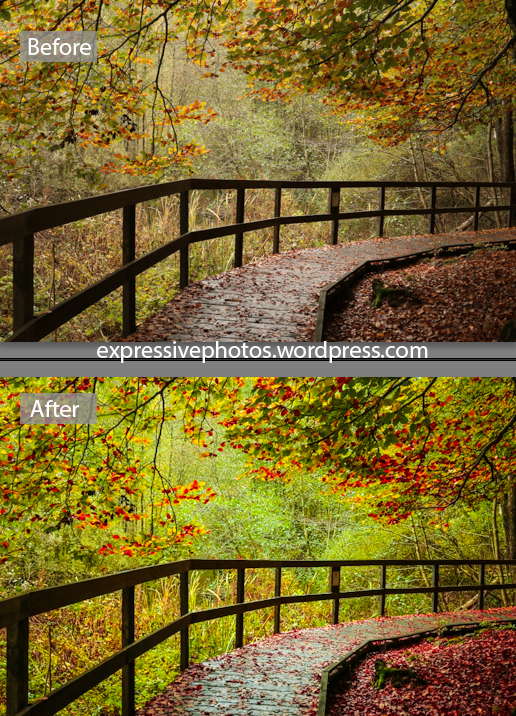 Before and after using Lightroom
