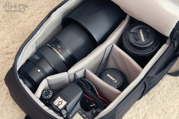 I have put the Lowepro Format 150 next to my usual bag the Lowepro 300 AW b5f837c3a538a
